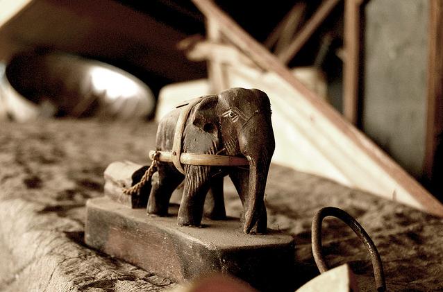 Leonardo Uehara en Flickr