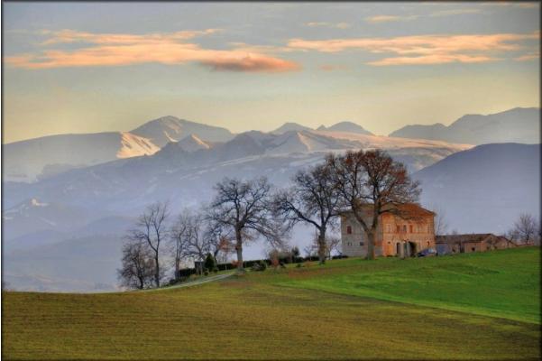 Luigi Alesi en Flickr
